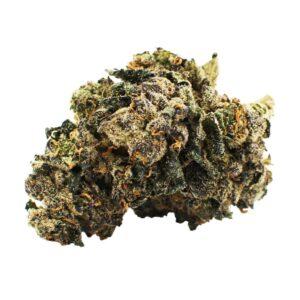 cannabis-CITIZEN STASH - Sunset Sherbert