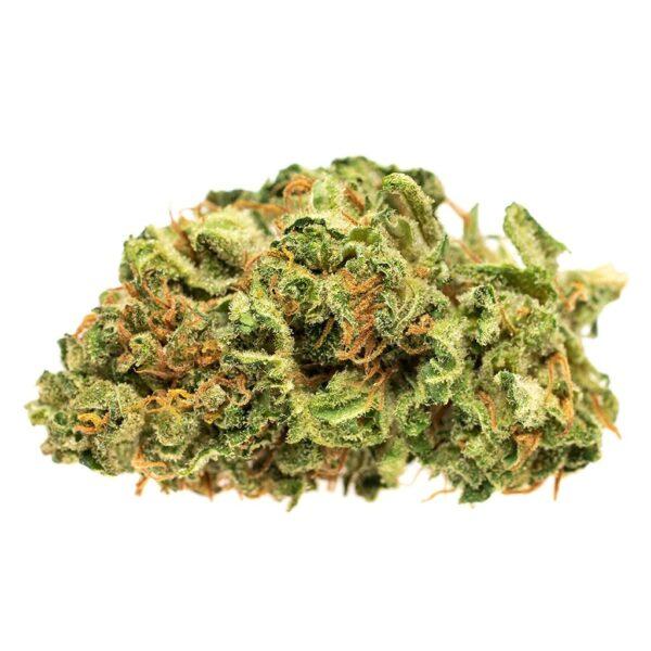 cannabis-GOOD SUPPLY - Jean Guy