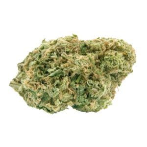 cannabis-HAVEN ST. PREMIUM CANNABIS - No. 515 Noisy Neighbour
