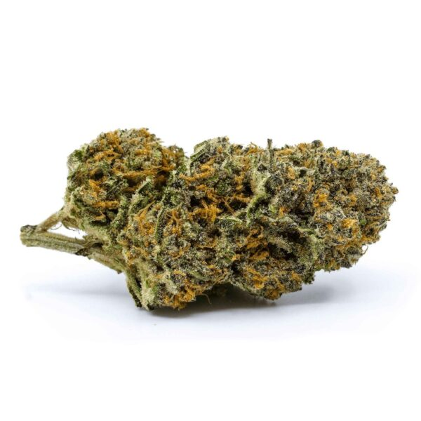 cannabis-REDECAN Wappa