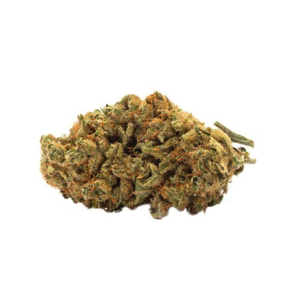 cannabis-Twd. - Indica