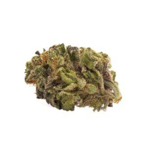 cannabis-Twd. - Sativa