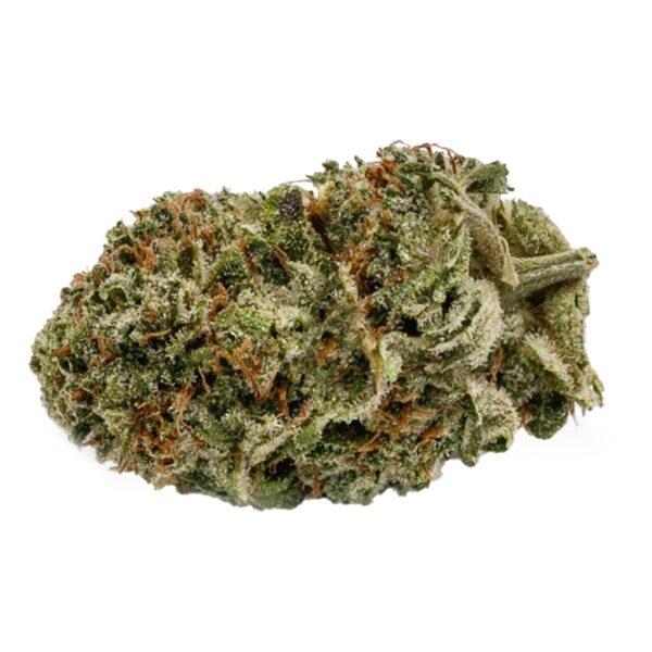 cannabis-ocs-blueberry-kush