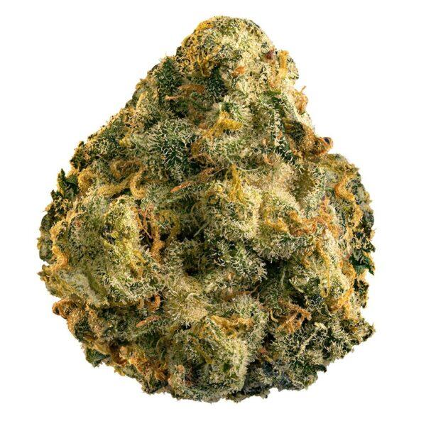 cannabis-EDISON CANNABIS CO. - The General (Grapefruit X GG) Pre-Roll